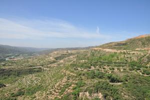 立體農業和生態林業