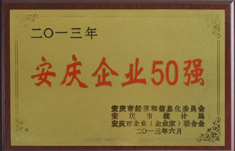 安庆企业50强