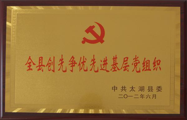 创先争优先进基层党组织